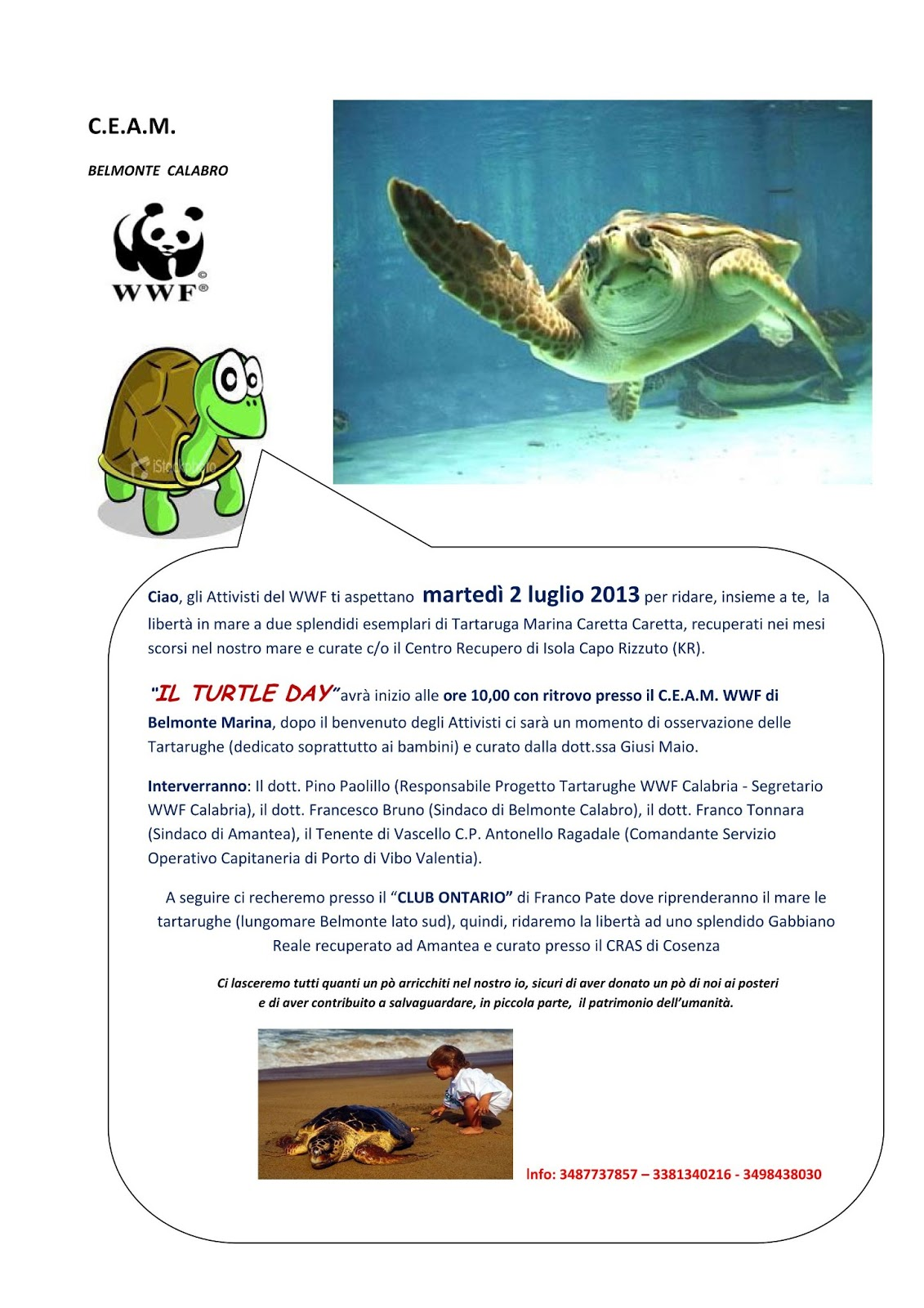 Thumbnail image for /public/upload/2013/7/635082710221584908_Turtle Day 2013.jpg